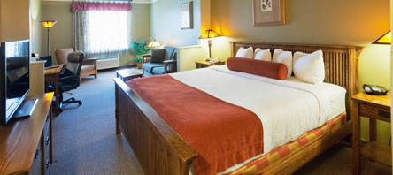 BEST WESTERN PLUS Sunset Suites Riverwalk, Texas Executive King Suites